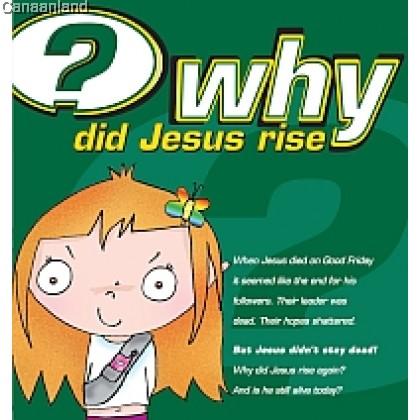 Why Did Jesus Rise? (bk)