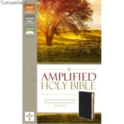 Amplified - Bonded Leather, Black