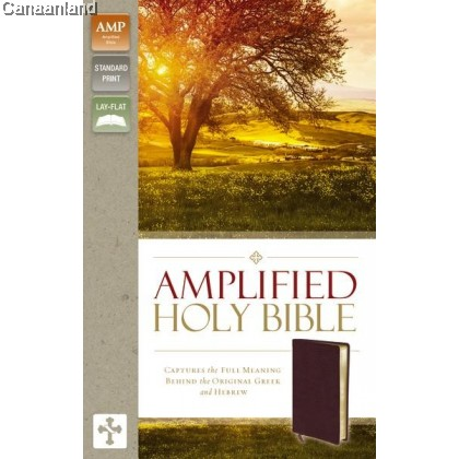 Amplified - Holy Bible, Burgundy, Bnd Lt