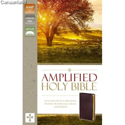 Amplified Holy Bible - Bonded Leather, Burgundy, Thumb Indexed