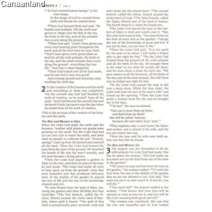 NLT - Holy Bible, Economy Outreach Edition, Large Print