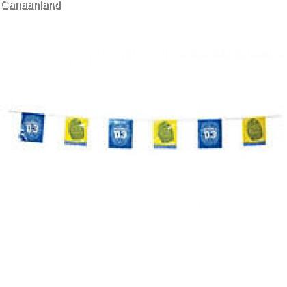 VBS 2014 - String Flags